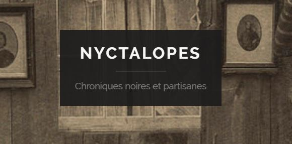 Logo du blog Nyctalopes.com